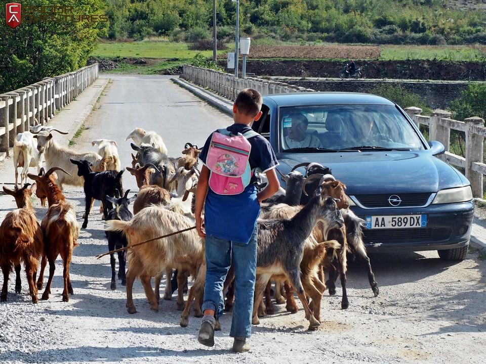 explorealbania-motoros túra-condorriders-sasok földje-albánia-shkodra-mes bridge